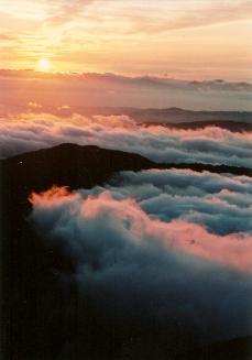 Mt. Asahi- Yamagata Pref.