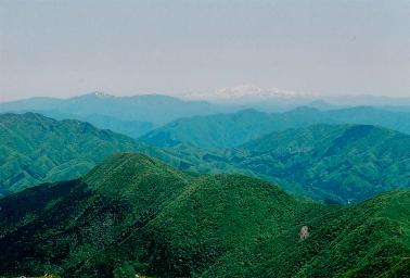 Hakusan, as seen from Mt. Ibuki